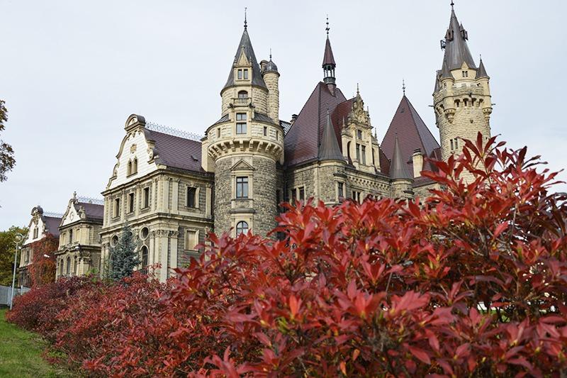 Zamek Moszna oraz azalie